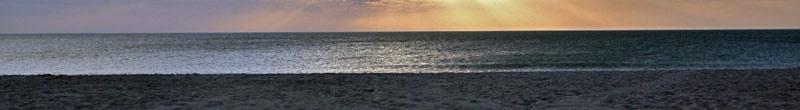 Enjoy the Gulf Coast Beach on Longboat Key.