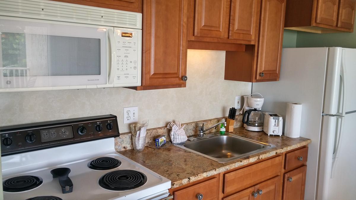 condo 201 kitchen