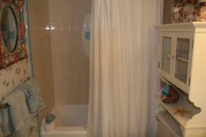 bath2_turtlecrawl302