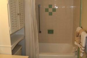 bath2_turtlecrawl304