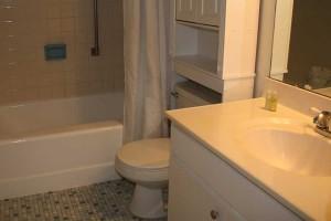 bath2_turtlecrawl502