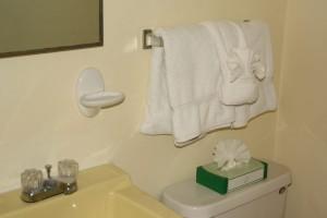 condo 61 bathroom