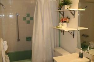 bath_turtlecrawl301