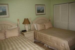 bed1_turtlecrawl303