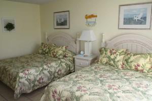 bed2_turtlecrawl301