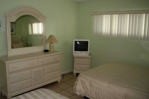 bed2_turtlecrawl303
