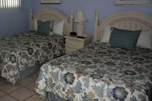 bed_turtlecrawl403