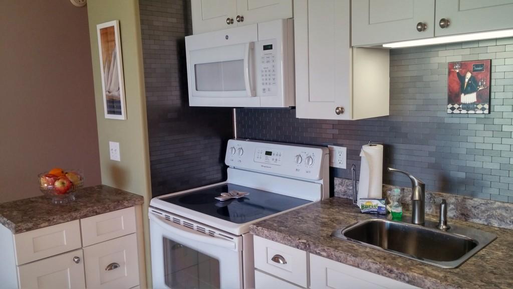 condo-103-kitchen1