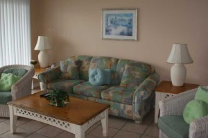 couch_turtlecrawl303
