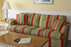 couch_turtlecrawl403