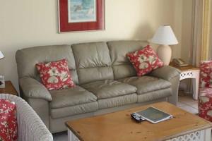 couch_turtlecrawl502