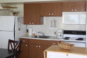 kitchen_turtlecrawl304