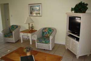 condo 64 living room
