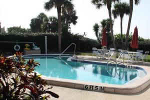 pool_turtlecrawl304