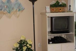tv_turtlecrawl303