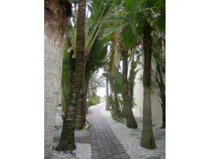 tc-walk-to-beach