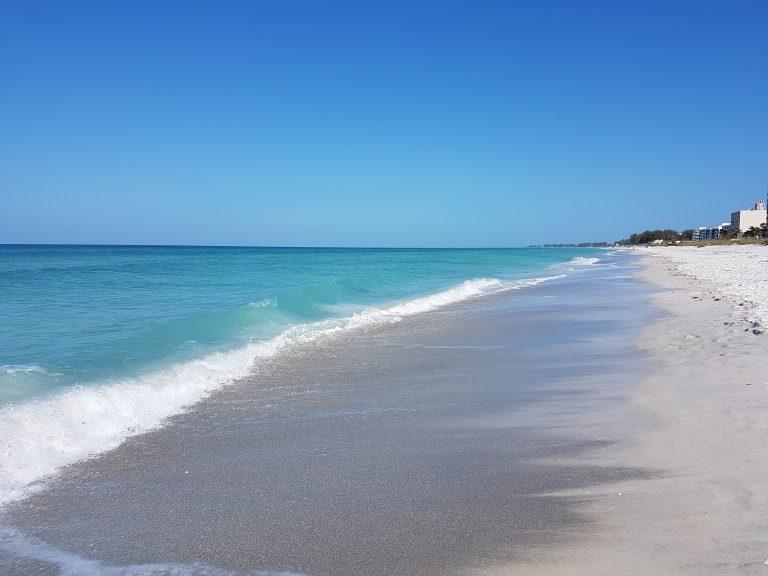 Turtle Crawl waves and beach