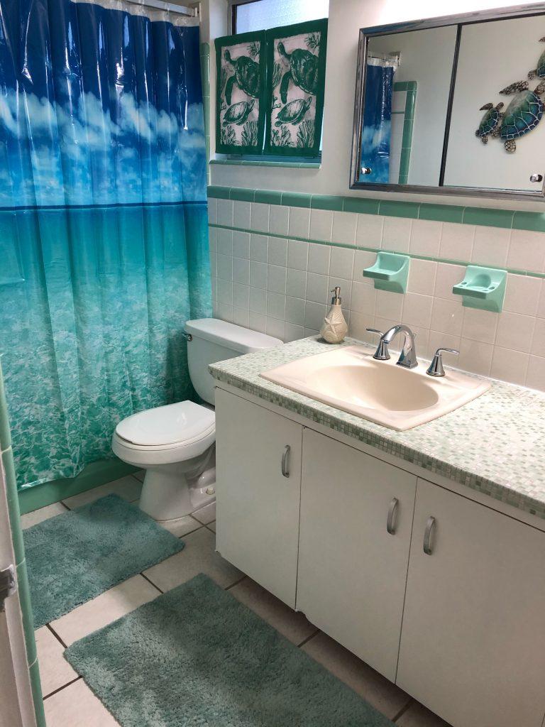 April 2020 Bathroom